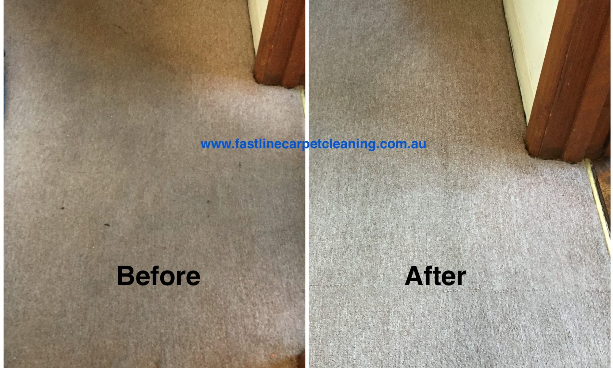 stain, remove, carpet, clean