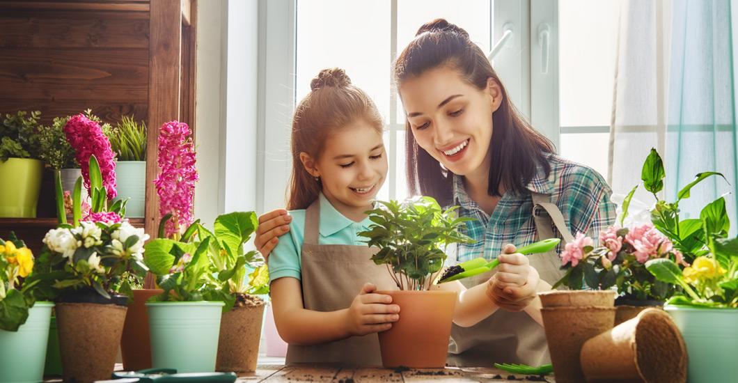 home decor,garden design,homewares,home improvement,attractive homes